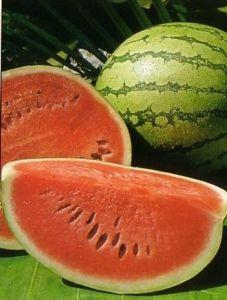 Semangka obat kencing manis/diabetes